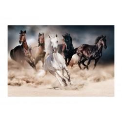 OBRAZ HORSES 120X80